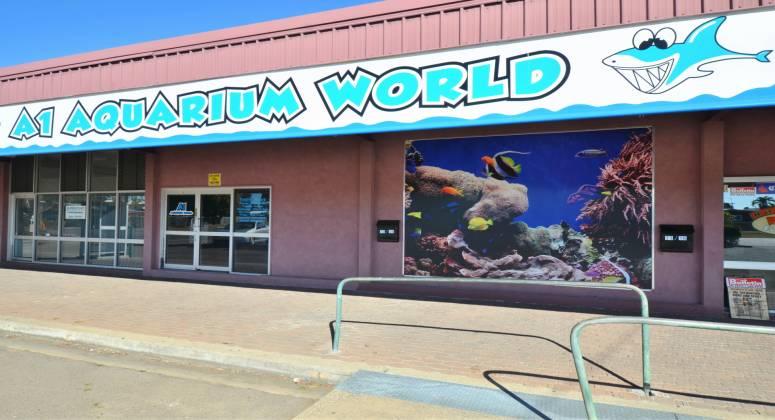 Retail Aquarium for Sale