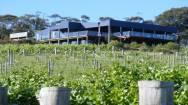 Wine Tourism Business ABM ID #3024