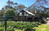 Freehold Pick Your Own Berry Garden & Café for Sale ABM ID #4074