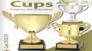 Trophies, Signs and Screen Printing Business ABM ID #6103
