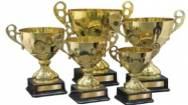 Trophy Wholesaler for Sale in Brisbane ABM ID #6230