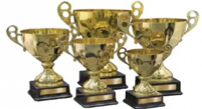 Trophy Wholesaler for Sale in Brisbane ABM ID #6230