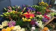 Florist Business For Sale in Inner East