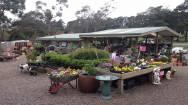 Nursery Garden Centre Business for Sale Yarra Ranges