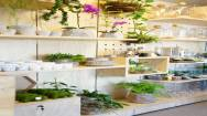 Under Management Florist Business For Sale Melbourne