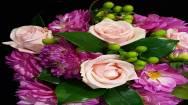 Award winning Florist Business For Sale Camberwell