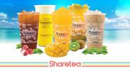 Sharetea Bubble Tea Franchise Business For Sale