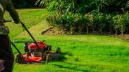 Garden and Maintenance Services Business for Sale North West