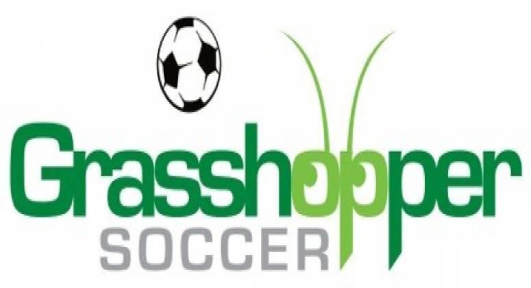 Grasshopper Soccer Sport Training Franchise Business For Sale Bayside