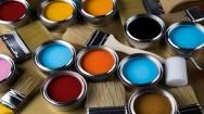 Franchise Paint Retail Service Business For Sale